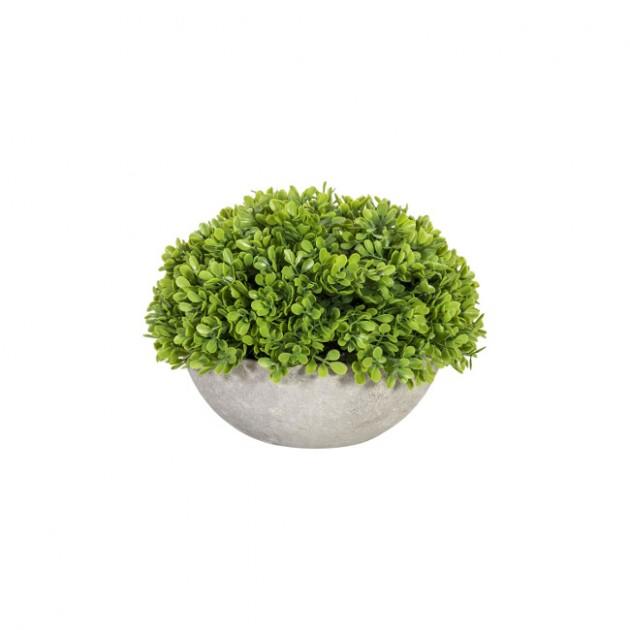 На фото: Штучна рослина Buxus (76534), Штучні квіти Home4You, каталог, ціна