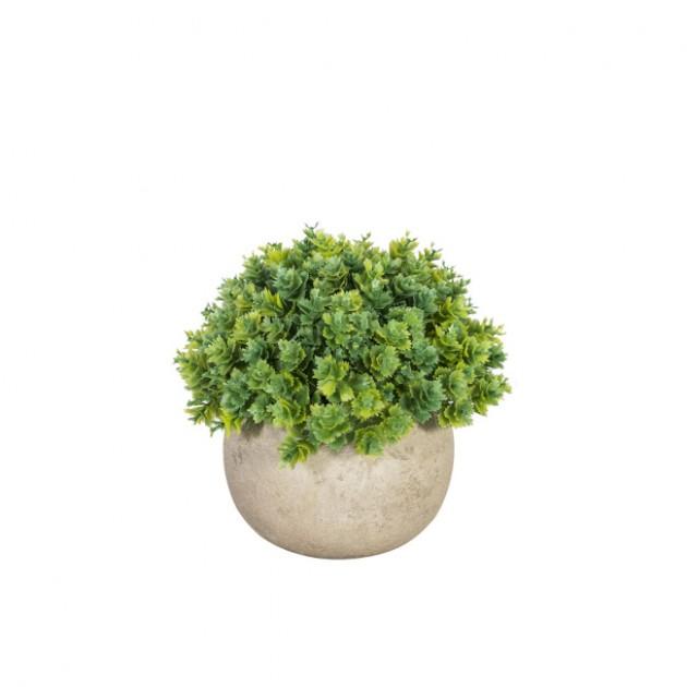 На фото: Штучна рослина Buxus (78004), Штучні квіти Home4You, каталог, ціна