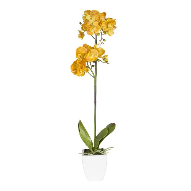 На фото: Орхідея In Garden (72695), Штучні квіти Home4You, каталог, ціна