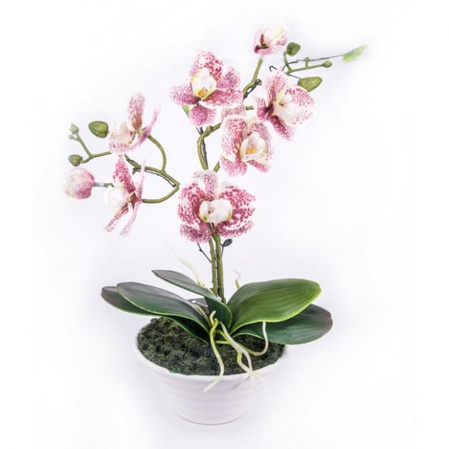 На фото: Орхідея In Garden (73734), Штучні квіти Home4You, каталог, ціна