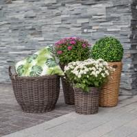Кашпо та горщики для квітів • Предмети інтер'єру